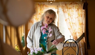 Helena kastelee orkideaa