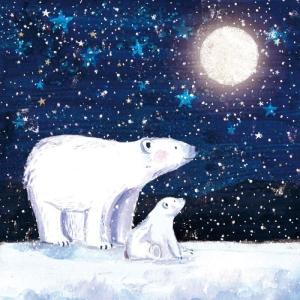 Jääkarhut katsoo tähteä